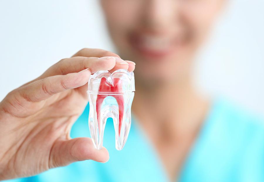 Todo sobre implantes dentales en el 2019
